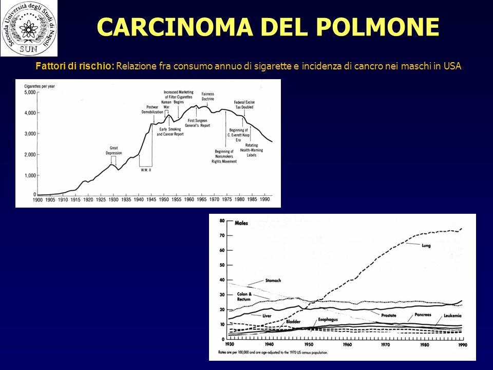 CARCINOMA DEL POLMONE Fattori di rischio: Fattori di rischio: Relazione fra consumo annuo di sigarette e incidenza di cancro nei maschi in USA