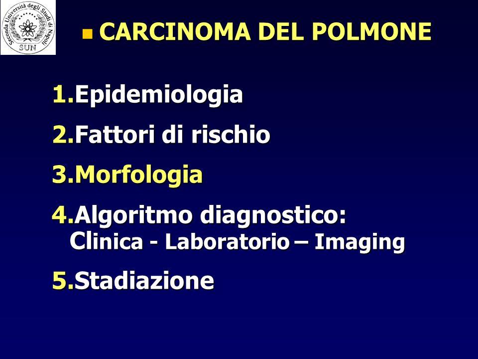 CARCINOMA DEL POLMONE CARCINOMA DEL POLMONE 1.Epidemiologia 2.Fattori di rischio 3.Morfologia 4.Algoritmo diagnostico: Cl inica - Laboratorio – Imaging 5.Stadiazione