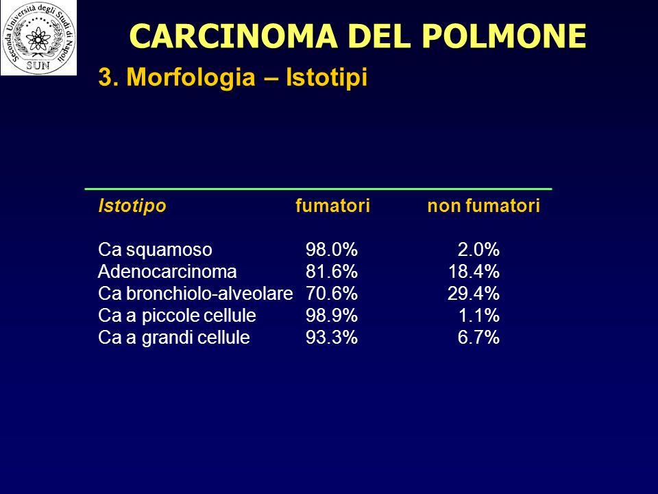 Istotipofumatorinon fumatori Ca squamoso 98.0% 2.0% Adenocarcinoma 81.6% 18.4% Ca bronchiolo-alveolare 70.6% 29.4% Ca a piccole cellule 98.9% 1.1% Ca a grandi cellule 93.3% 6.7% CARCINOMA DEL POLMONE 3.