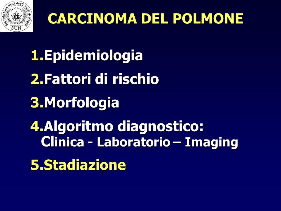 1.Epidemiologia 2.Fattori di rischio 3.Morfologia 4.Algoritmo diagnostico: Cl inica - Laboratorio – Imaging 5.Stadiazione
