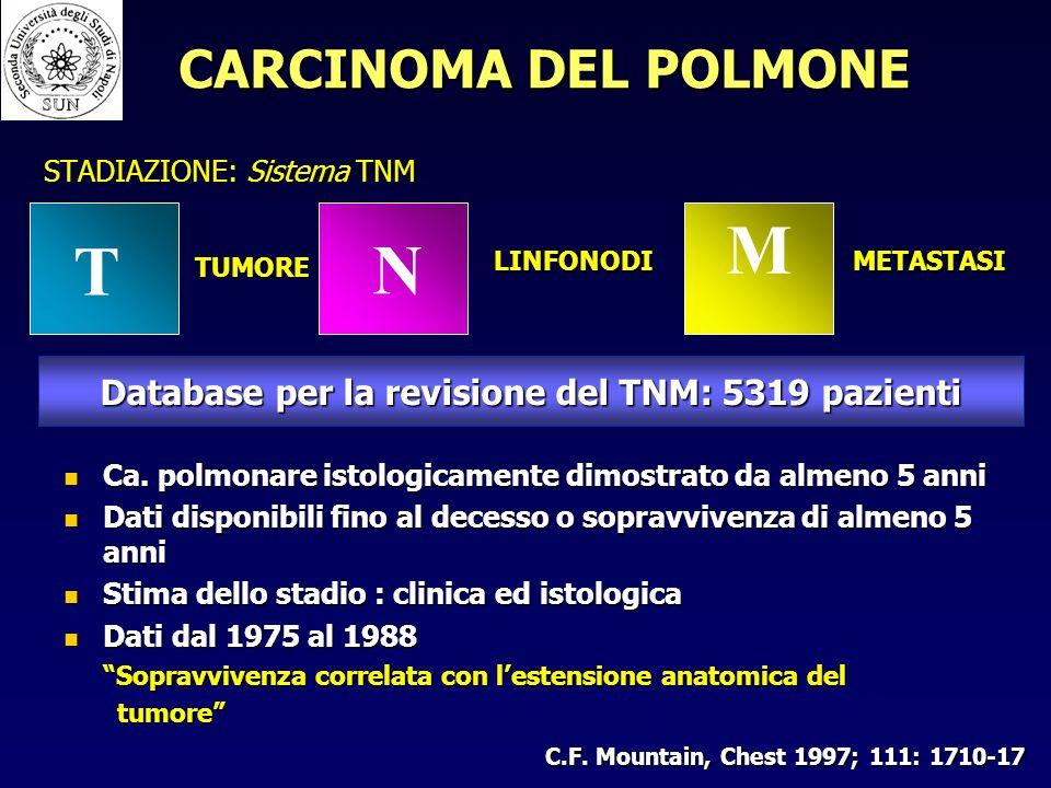 STADIAZIONE: Sistema TNM M T N TUMORE LINFONODIMETASTASI Database per la revisione del TNM: 5319 pazienti Ca.