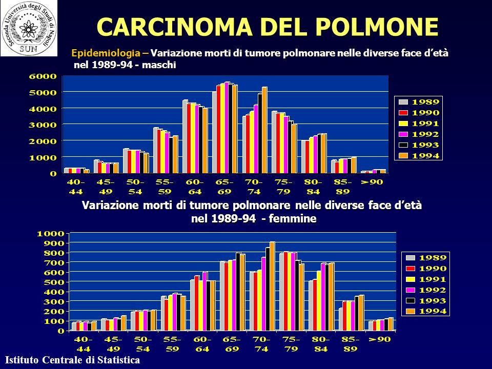 Istituto Centrale di Statistica Variazione morti di tumore polmonare nelle diverse face detà nel 1989-94 - femmine nel 1989-94 - femmine CARCINOMA DEL POLMONE Epidemiologia – Variazione morti di tumore polmonare nelle diverse face detà nel 1989-94 - maschi nel 1989-94 - maschi