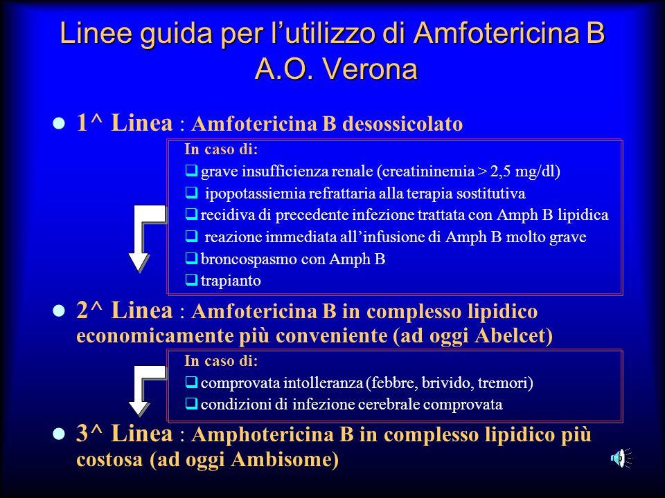Linee guida per lutilizzo di Amfotericina B A.O. Verona 1^ Linea : Amfotericina B desossicolato In caso di: grave insufficienza renale (creatininemia
