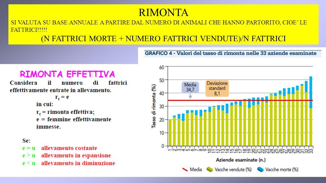 RIMONTA SI VALUTA SU BASE ANNUALE A PARTIRE DAL NUMERO DI ANIMALI CHE HANNO PARTORITO, CIOE LE FATTRICI!!!!.