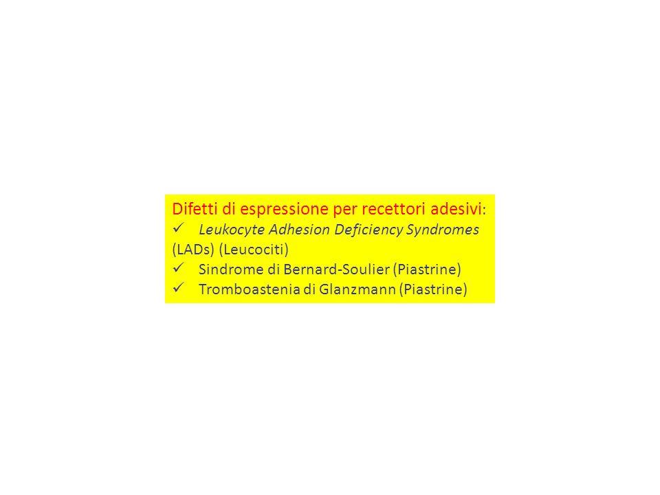 Difetti di espressione per recettori adesivi : Leukocyte Adhesion Deficiency Syndromes (LADs) (Leucociti) Sindrome di Bernard-Soulier (Piastrine) Trom