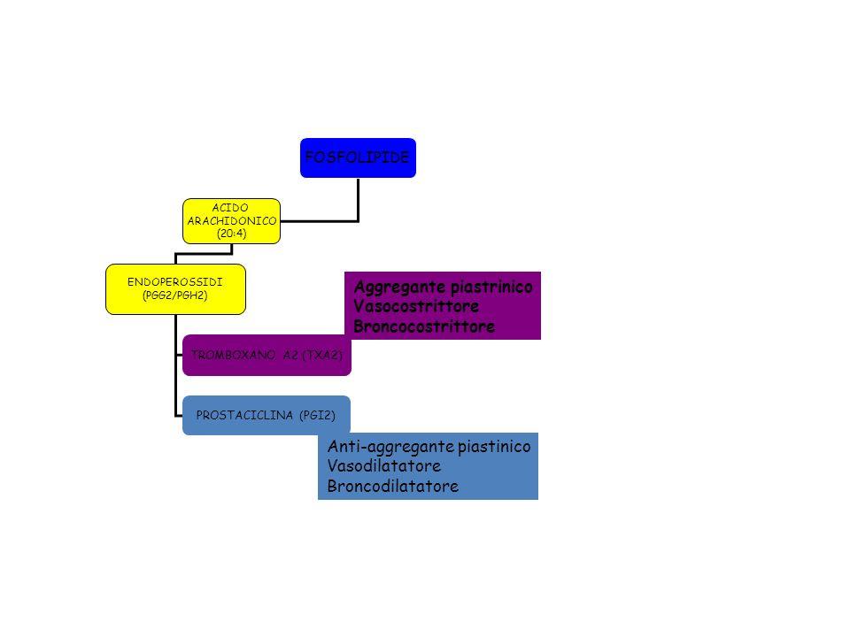 FOSFOLIPIDE ACIDO ARACHIDONICO (20:4) ENDOPEROSSIDI (PGG2/PGH2) TROMBOXANO A2 (TXA2) PROSTACICLINA (PGI2) Aggregante piastrinico Vasocostrittore Bronc