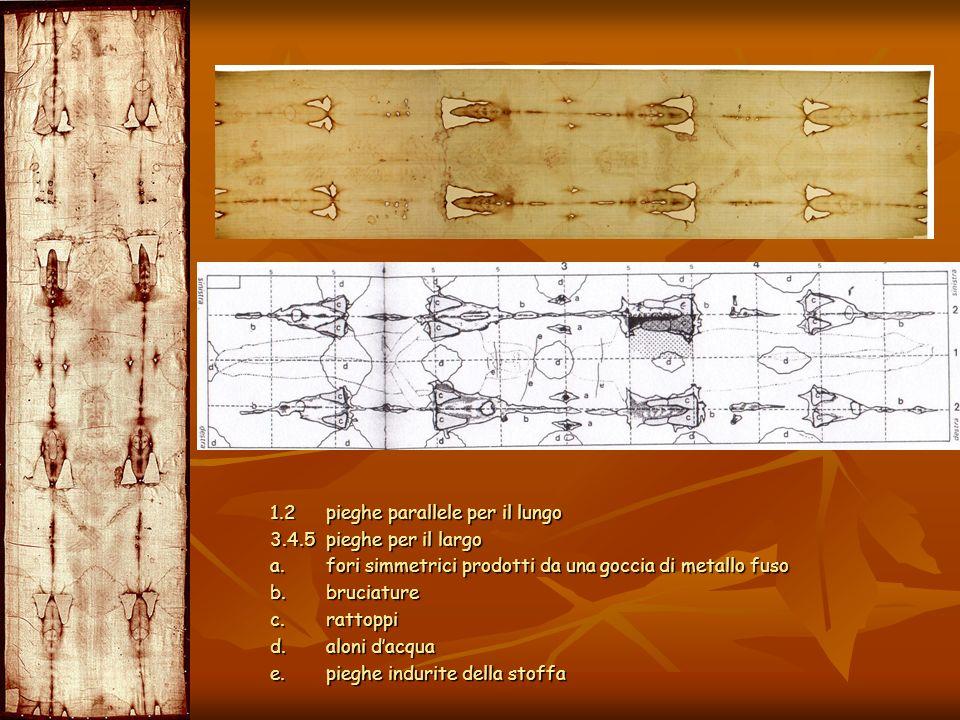 1.2 pieghe parallele per il lungo 3.4.5 pieghe per il largo a. fori simmetrici prodotti da una goccia di metallo fuso b. bruciature c. rattoppi d. alo