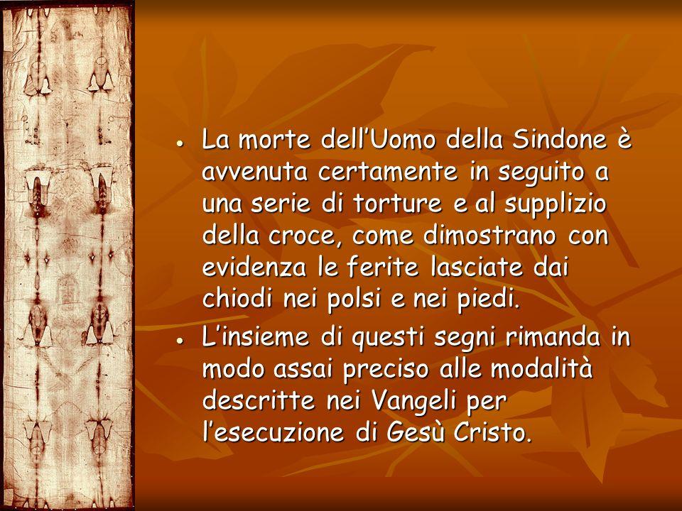 La morte dellUomo della Sindone è avvenuta certamente in seguito a una serie di torture e al supplizio della croce, come dimostrano con evidenza le fe