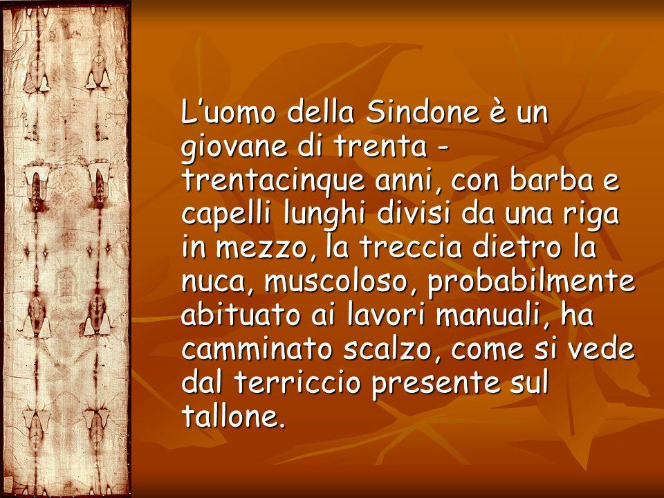 Luomo della Sindone è un giovane di trenta - trentacinque anni, con barba e capelli lunghi divisi da una riga in mezzo, la treccia dietro la nuca, mus