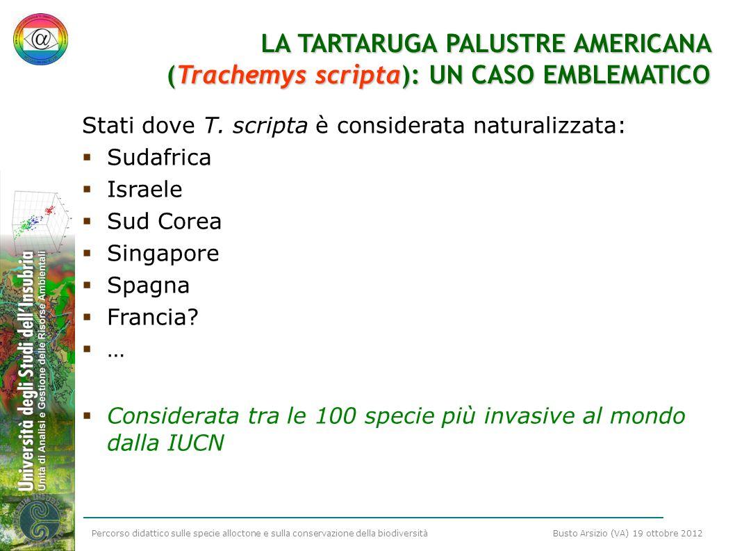 Percorso didattico sulle specie alloctone e sulla conservazione della biodiversità Busto Arsizio (VA) 19 ottobre 2012 LA TARTARUGA PALUSTRE AMERICANA