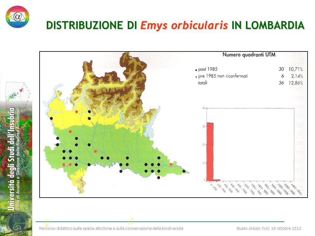 Percorso didattico sulle specie alloctone e sulla conservazione della biodiversità Busto Arsizio (VA) 19 ottobre 2012 DISTRIBUZIONE DI Emys orbiculari