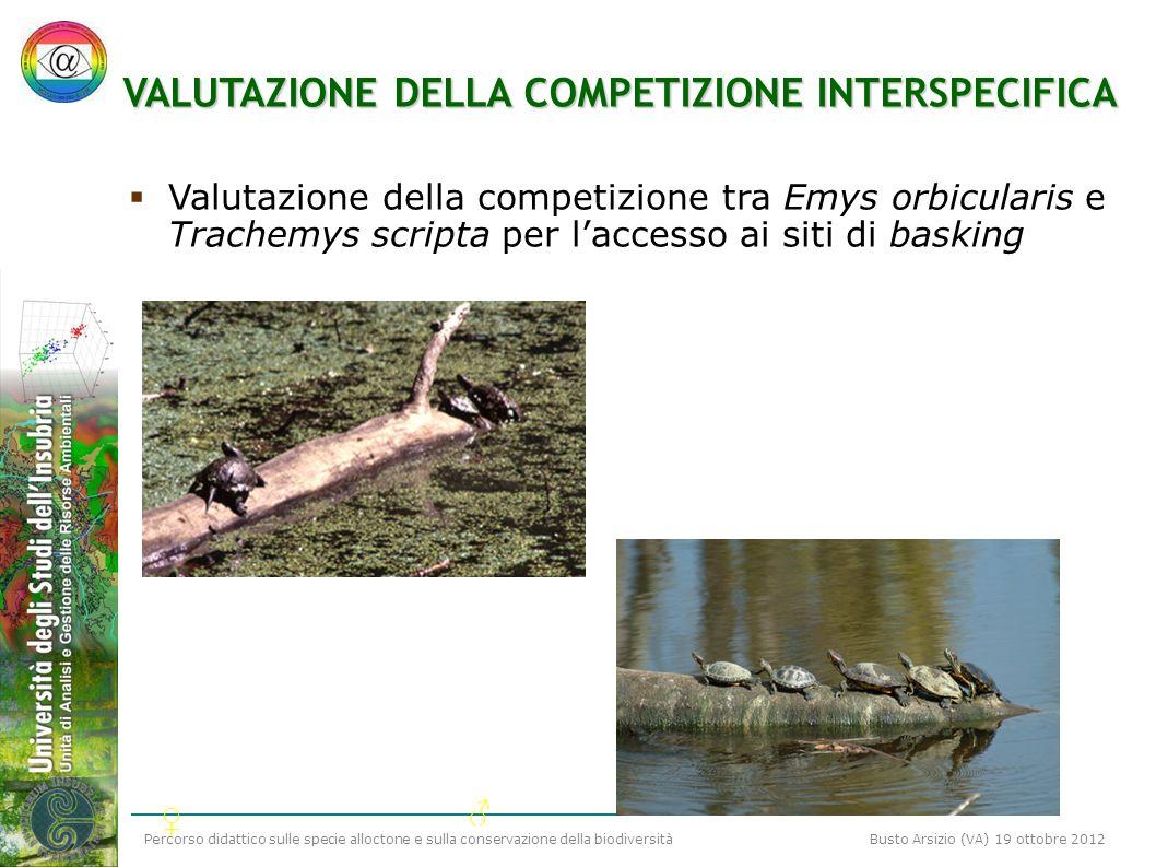 Percorso didattico sulle specie alloctone e sulla conservazione della biodiversità Busto Arsizio (VA) 19 ottobre 2012 VALUTAZIONE DELLA COMPETIZIONE I