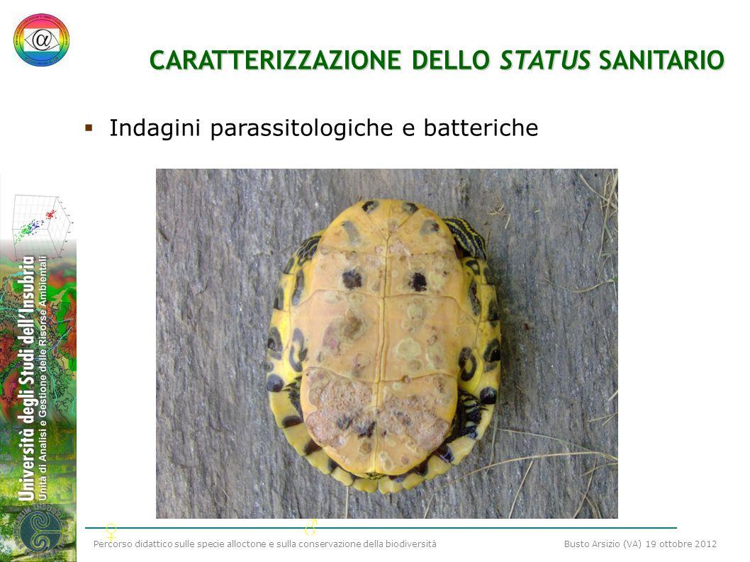 Percorso didattico sulle specie alloctone e sulla conservazione della biodiversità Busto Arsizio (VA) 19 ottobre 2012 CARATTERIZZAZIONE DELLO STATUS S