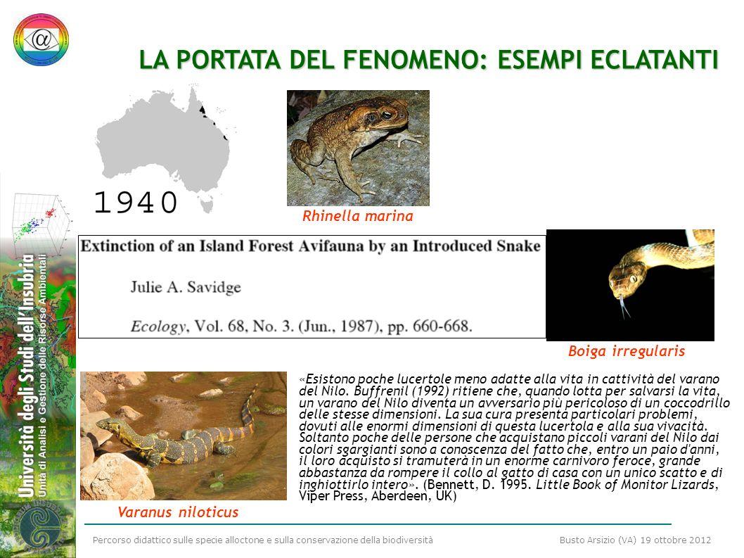 Percorso didattico sulle specie alloctone e sulla conservazione della biodiversità Busto Arsizio (VA) 19 ottobre 2012 LA PORTATA DEL FENOMENO: ESEMPI