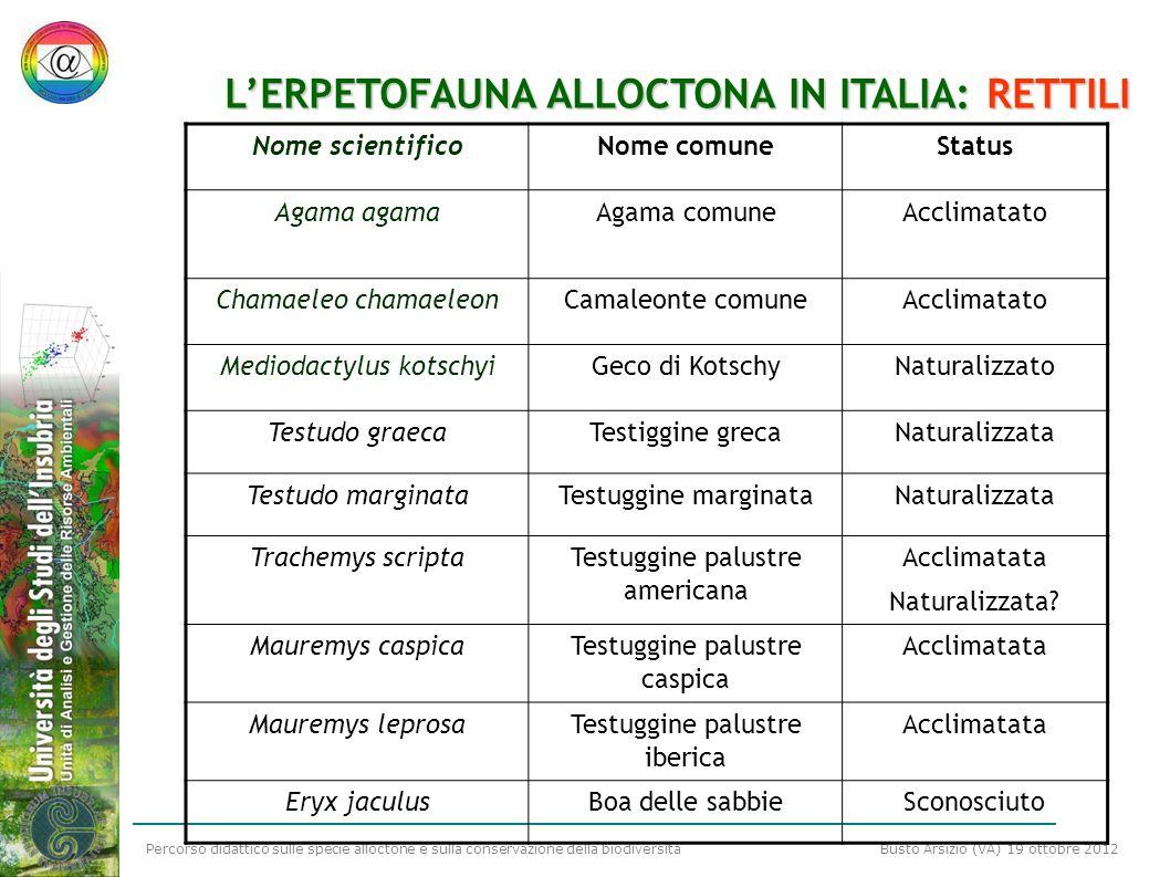 Percorso didattico sulle specie alloctone e sulla conservazione della biodiversità Busto Arsizio (VA) 19 ottobre 2012 LERPETOFAUNA ALLOCTONA IN ITALIA
