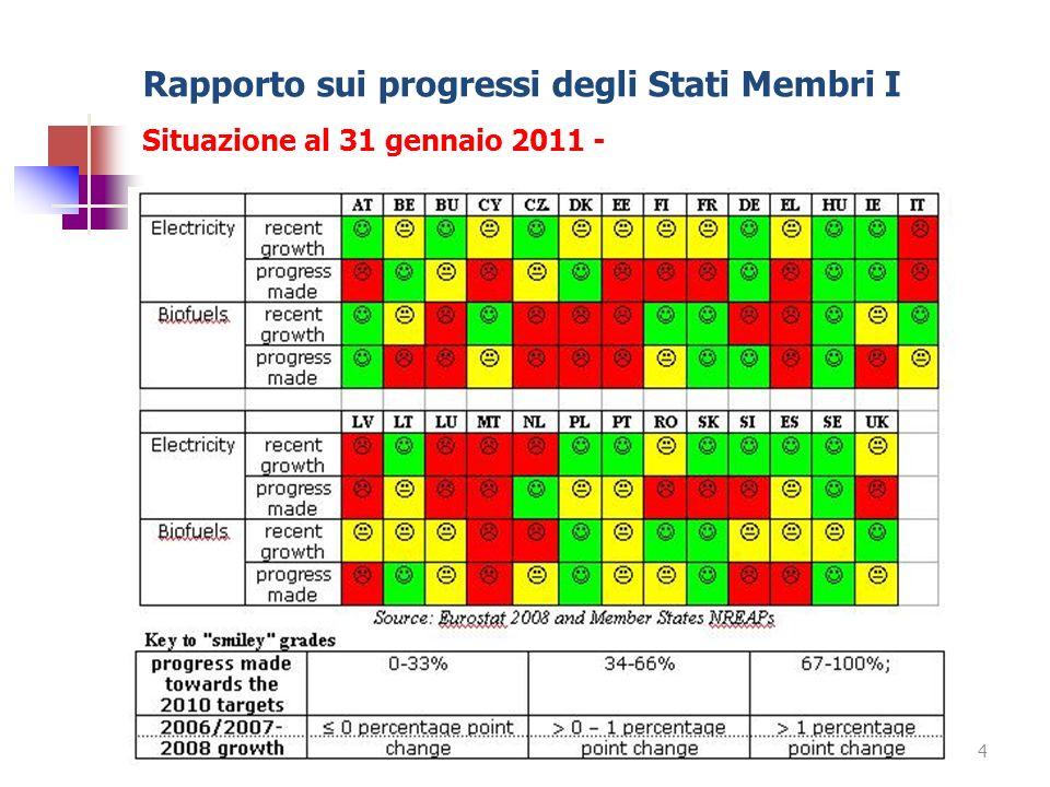 Rapporto sui progressi degli Stati Membri I Situazione al 31 gennaio 2011 - 4