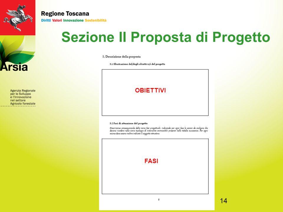 14 Sezione II Proposta di Progetto OBIETTIVI FASI