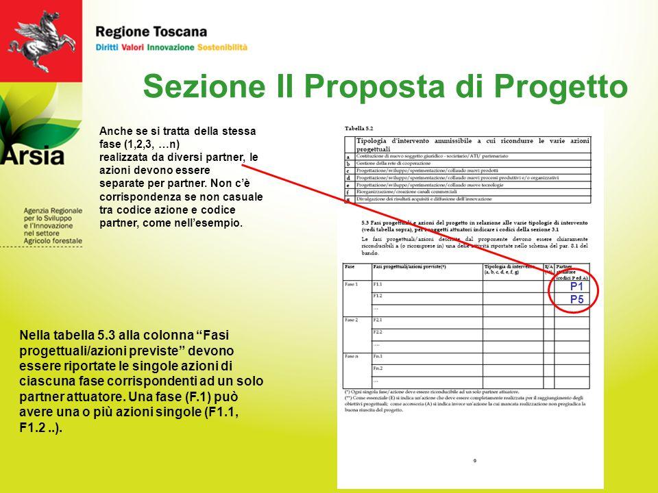15 Sezione II Proposta di Progetto Nella tabella 5.3 alla colonna Fasi progettuali/azioni previste devono essere riportate le singole azioni di ciascuna fase corrispondenti ad un solo partner attuatore.