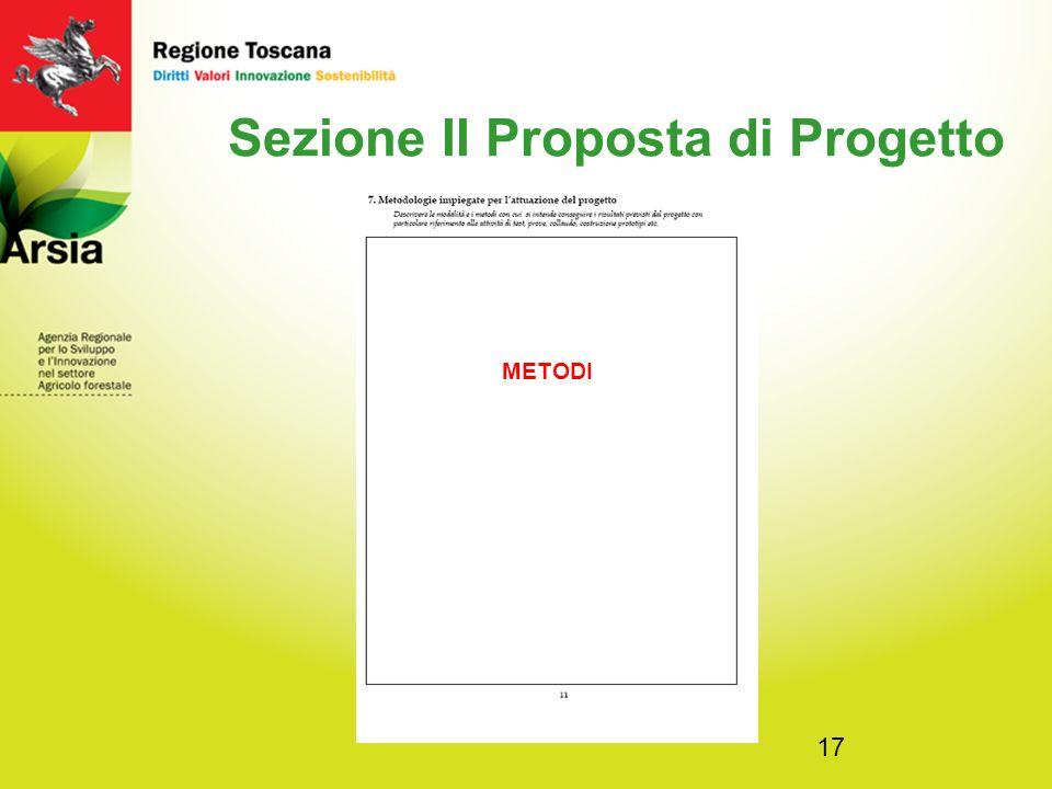 17 Sezione II Proposta di Progetto METODI