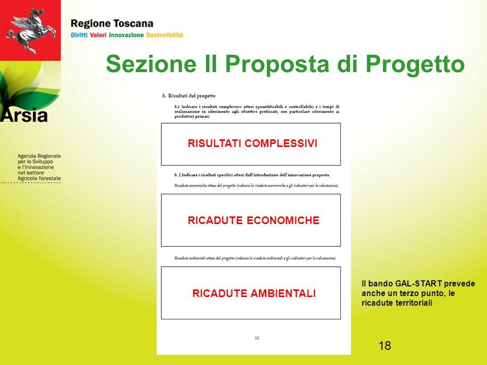 18 Sezione II Proposta di Progetto RISULTATI COMPLESSIVI RICADUTE ECONOMICHE RICADUTE AMBIENTALI Il bando GAL-START prevede anche un terzo punto, le ricadute territoriali