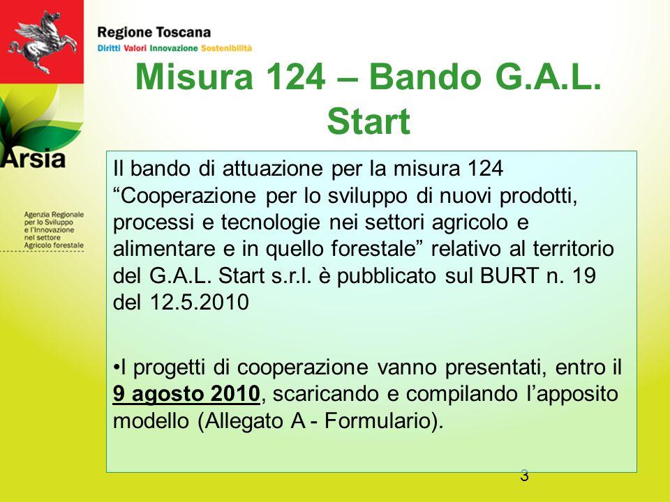 3 Misura 124 – Bando G.A.L.