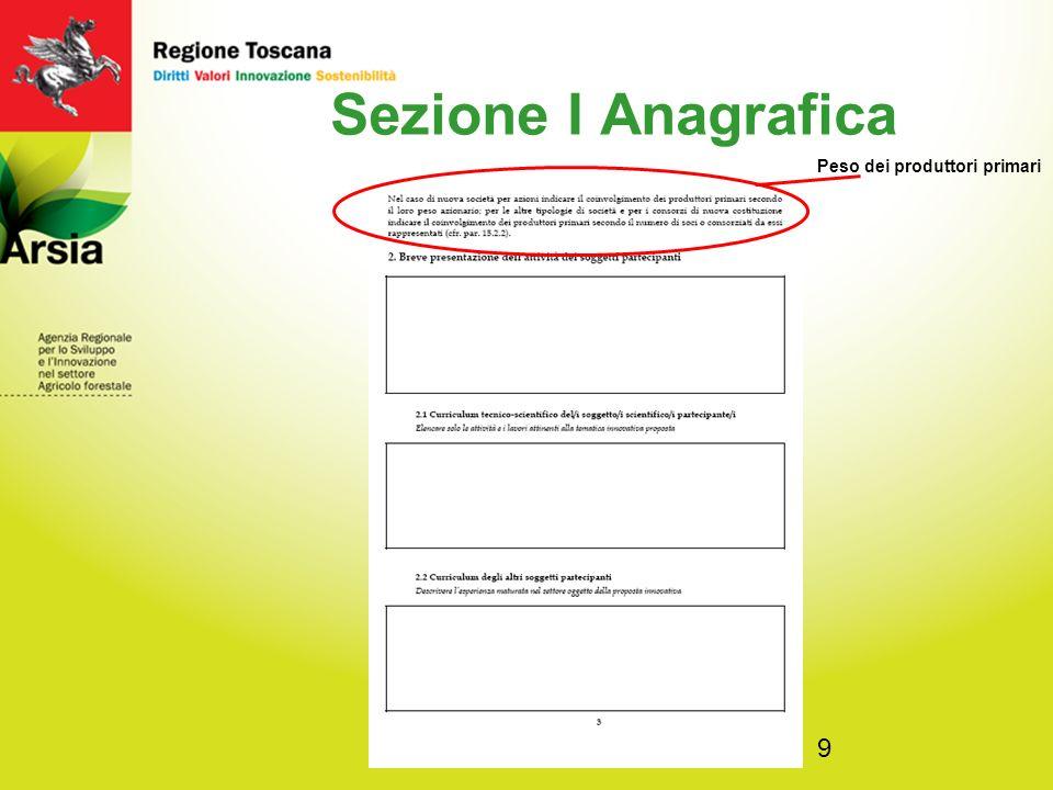 10 Sezione I Anagrafica Per attività prevalente del soggetto si intende il settore di riferimento in cui opera (ad esempio: produzione, trasformazione, commercio, ricerca, comparto pubblico, etc.).