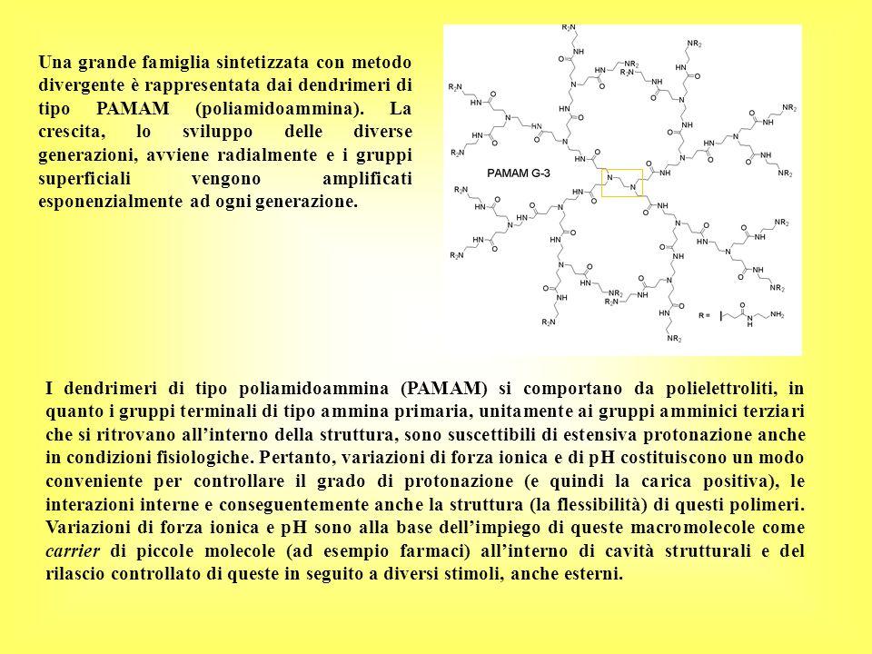 Una grande famiglia sintetizzata con metodo divergente è rappresentata dai dendrimeri di tipo PAMAM (poliamidoammina). La crescita, lo sviluppo delle