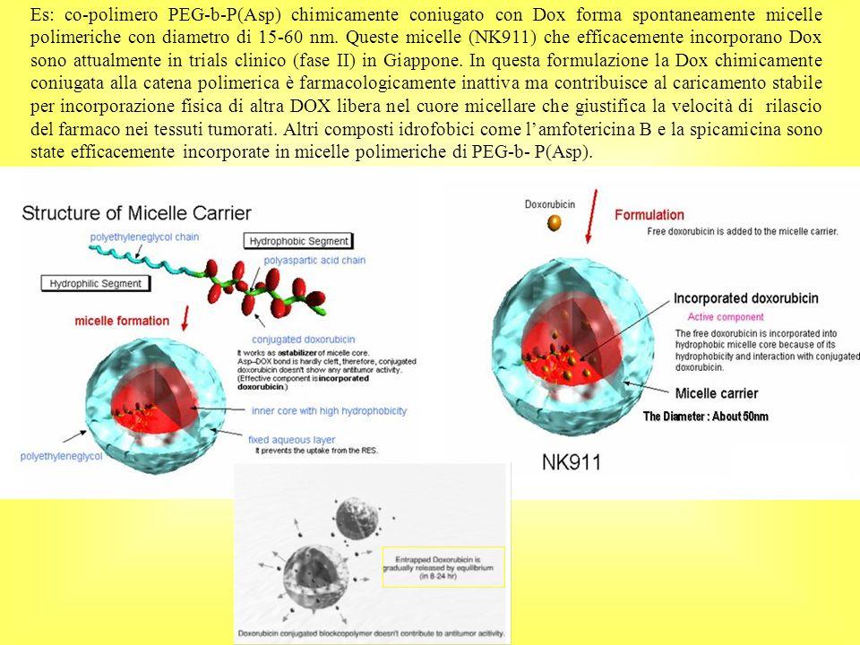 Es: co-polimero PEG-b-P(Asp) chimicamente coniugato con Dox forma spontaneamente micelle polimeriche con diametro di 15-60 nm. Queste micelle (NK911)