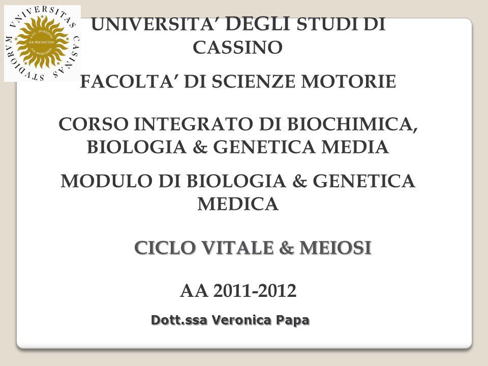 UNIVERSITA DEGLI STUDI DI CASSINO FACOLTA DI SCIENZE MOTORIE CORSO INTEGRATO DI BIOCHIMICA, BIOLOGIA & GENETICA MEDIA MODULO DI BIOLOGIA & GENETICA MEDICA AA 2011-2012 Dott.ssa Veronica Papa CICLO VITALE & MEIOSI
