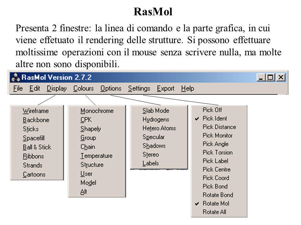 RasMol Presenta 2 finestre: la linea di comando e la parte grafica, in cui viene effetuato il rendering delle strutture. Si possono effettuare moltiss