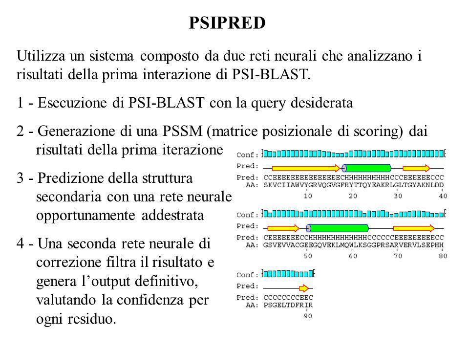 PSIPRED Utilizza un sistema composto da due reti neurali che analizzano i risultati della prima interazione di PSI-BLAST. 1 - Esecuzione di PSI-BLAST