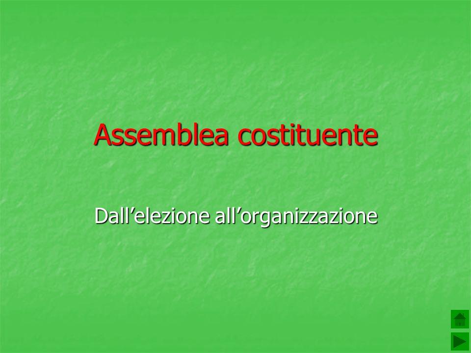 Assemblea costituente Dallelezione allorganizzazione