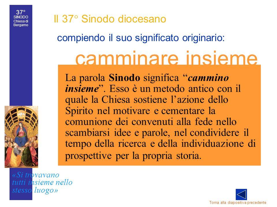 37° SINODO Chiesa di Bergamo «Si trovavano tutti insieme nello stesso luogo» 37° Sinodo diocesano 16 Il 37° Sinodo diocesano compiendo il suo signific