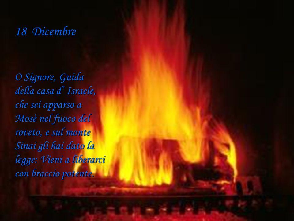 17 Dicembre O Sapienza, che esci dalla bocca dell Altissimo, ti estendi ai confini del mondo, e tutto disponi con soavità e con forza: Vieni, insegnac