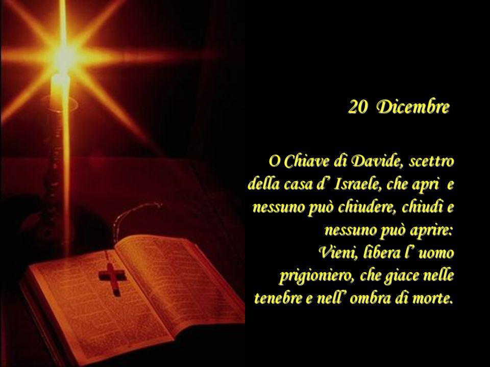 19 Dicembre O Germoglio di Iesse, che ti innalzi come segno per i popoli: tacciono davanti a te i re della terra, e le nazioni t invocano: Vieni a lib