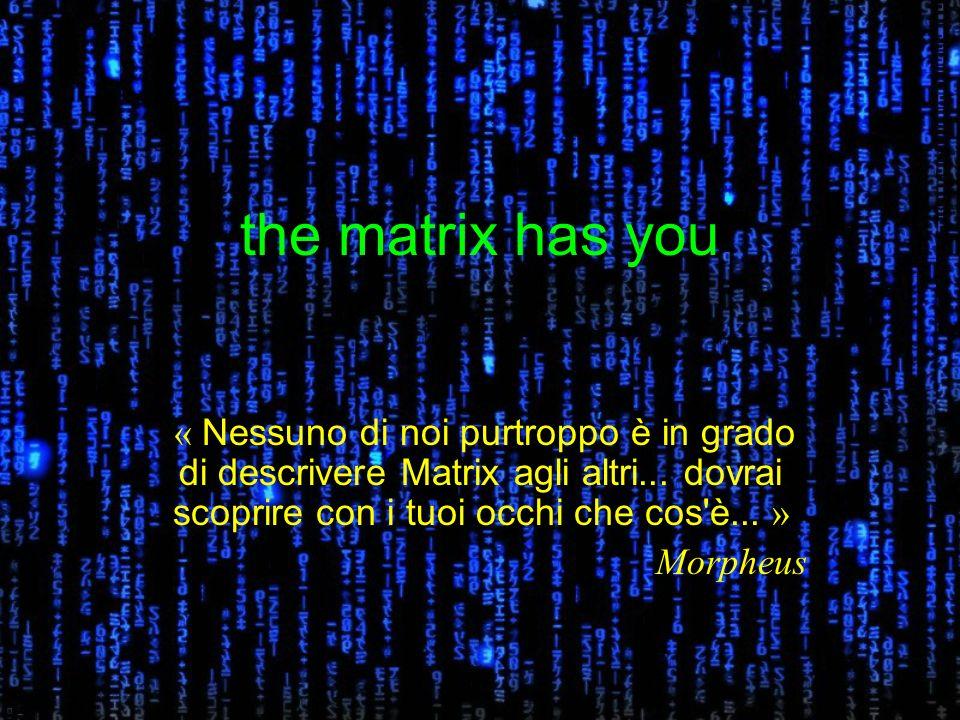 the matrix has you « Nessuno di noi purtroppo è in grado di descrivere Matrix agli altri...