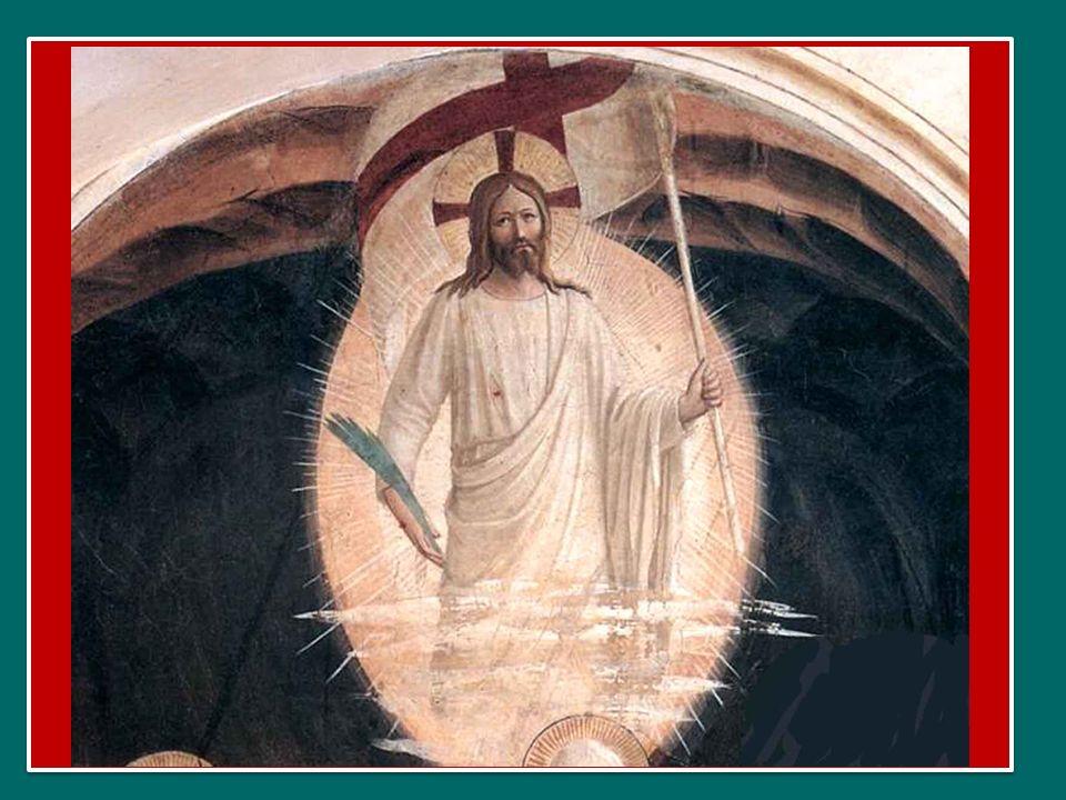 Siate ancorati a questa speranza: questa àncora che è nel cielo; tenete forte la corda, siate ancorati e portate avanti la speranza.