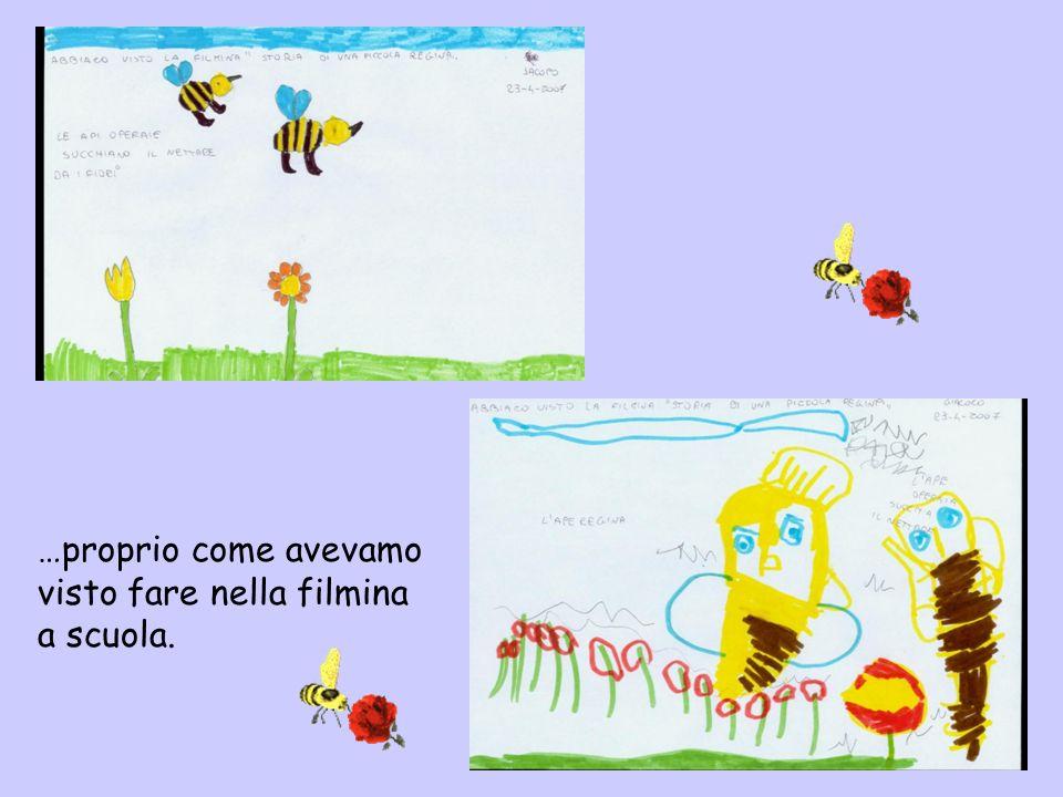 Le api sono bravissime a produrre il miele ma a raccoglierlo ci pensa il sig.