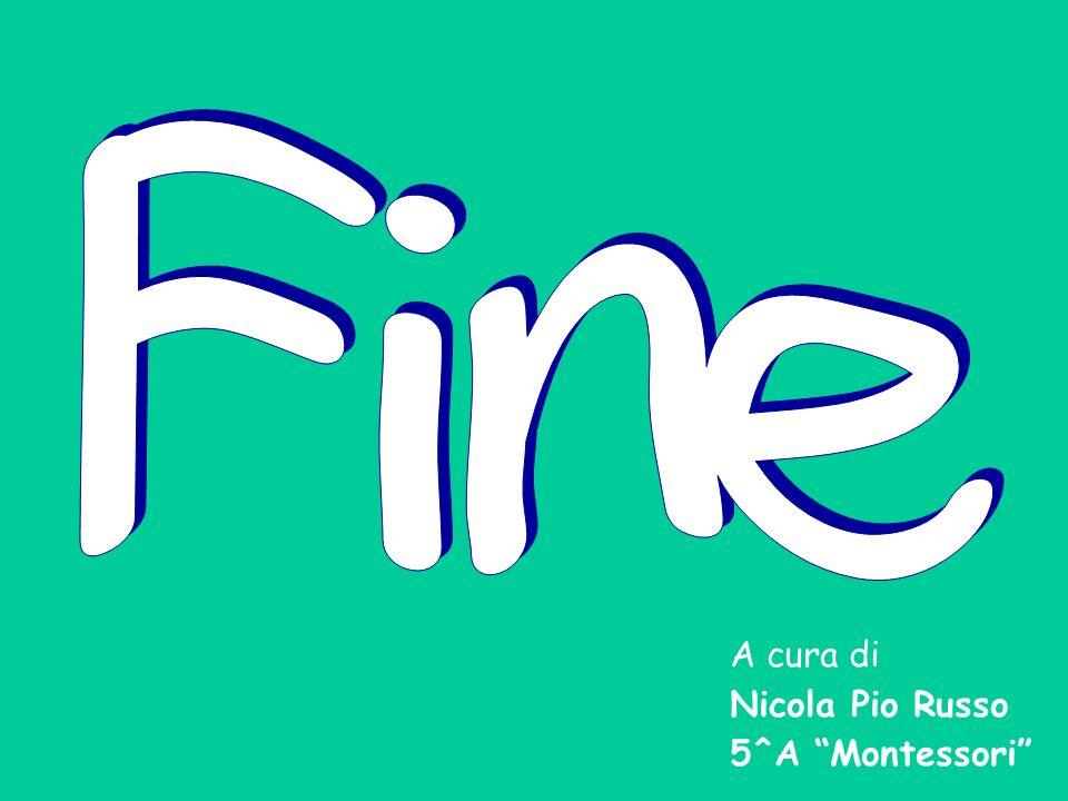 A cura di Nicola Pio Russo 5^A Montessori