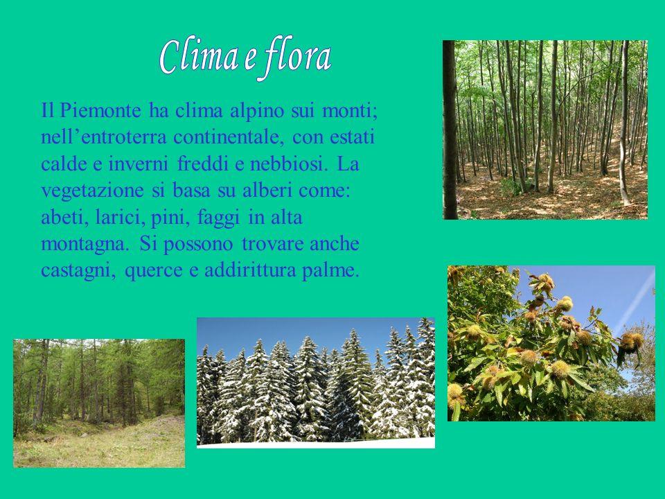 Il Piemonte ha clima alpino sui monti; nellentroterra continentale, con estati calde e inverni freddi e nebbiosi. La vegetazione si basa su alberi com