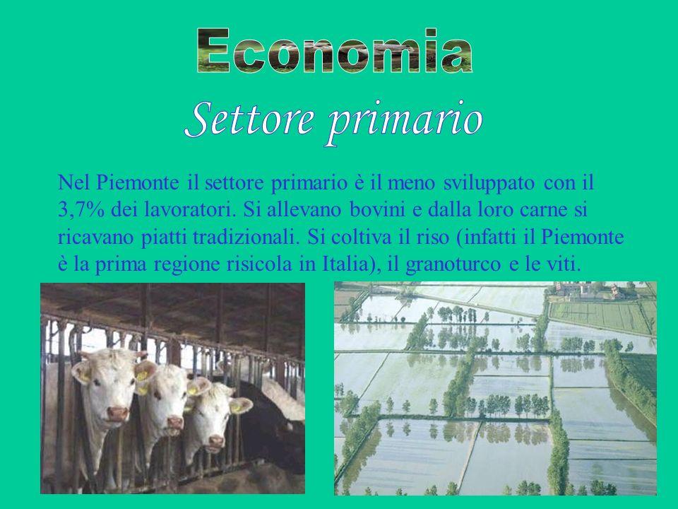 Nel Piemonte il settore primario è il meno sviluppato con il 3,7% dei lavoratori. Si allevano bovini e dalla loro carne si ricavano piatti tradizional