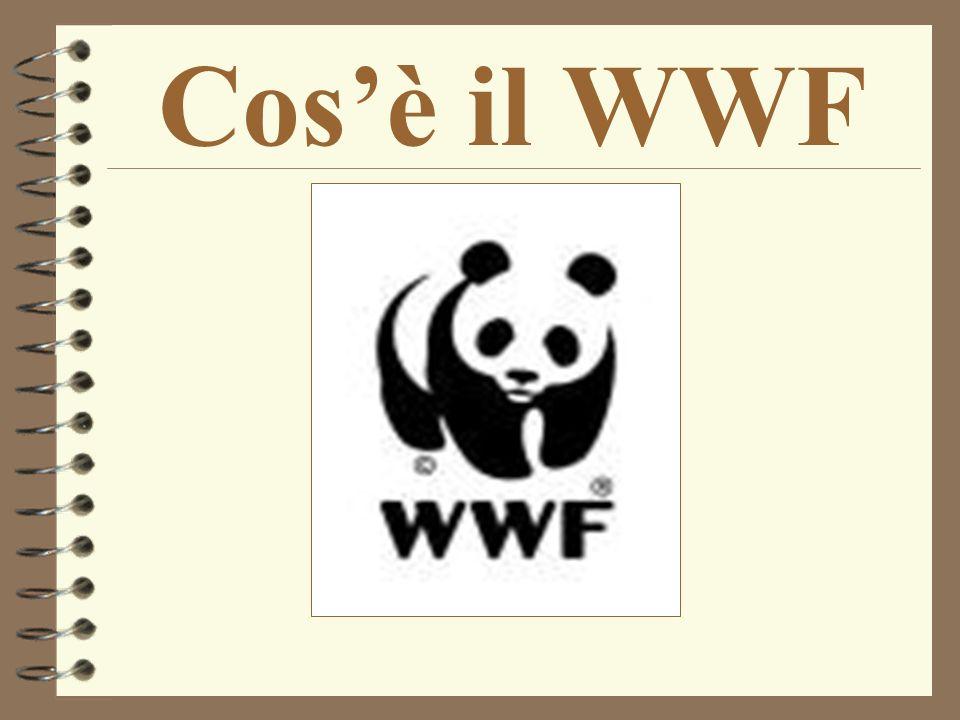 Cosè il WWF