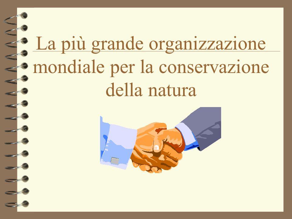 La più grande organizzazione mondiale per la conservazione della natura