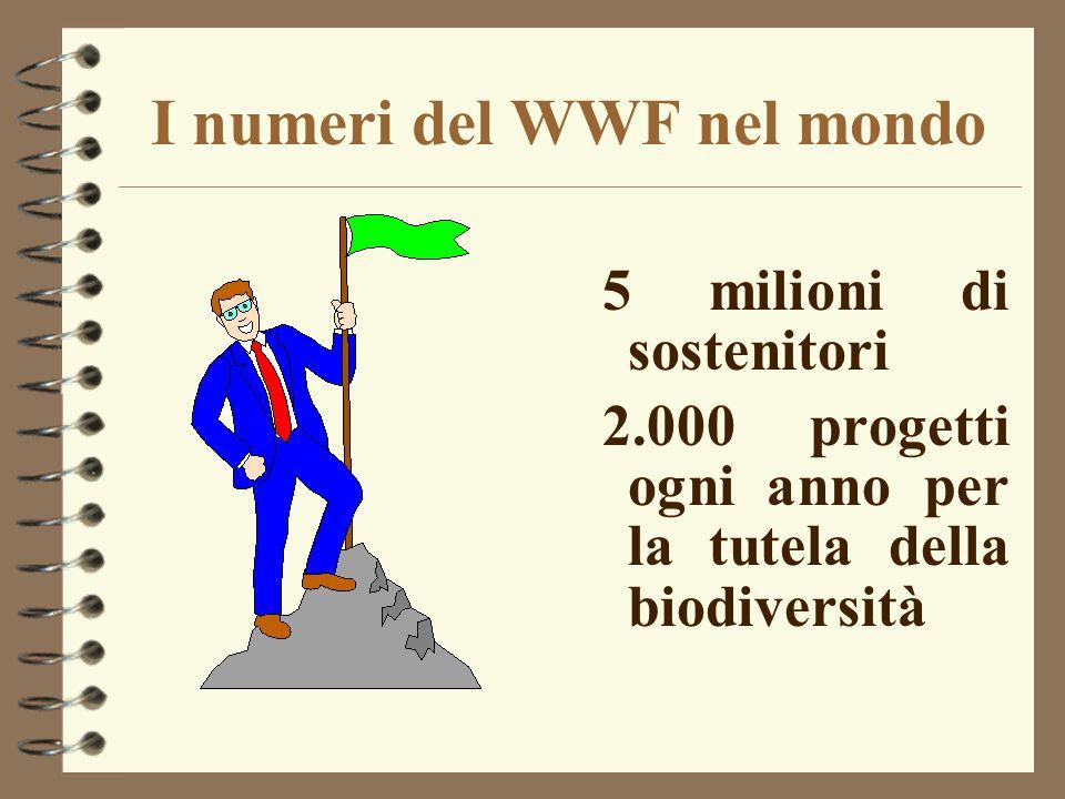 I numeri del WWF nel mondo 5 milioni di sostenitori 2.000 progetti ogni anno per la tutela della biodiversità