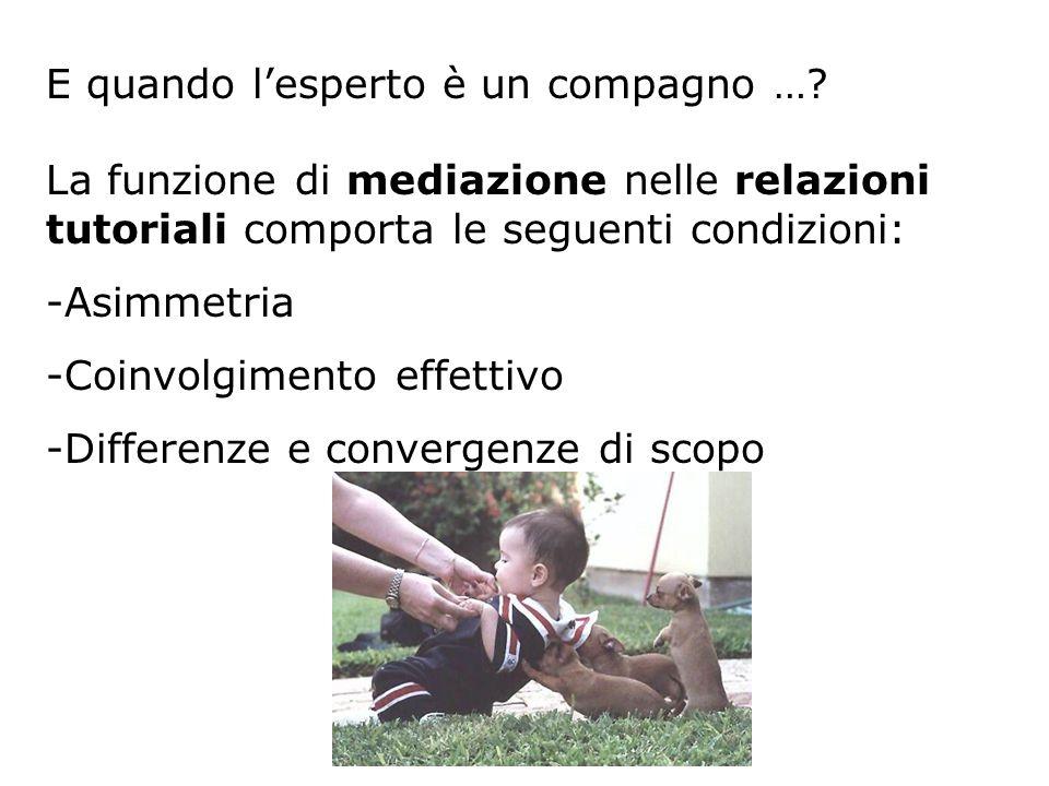 La funzione di mediazione nelle relazioni tutoriali comporta le seguenti condizioni: -Asimmetria -Coinvolgimento effettivo -Differenze e convergenze di scopo E quando lesperto è un compagno …?