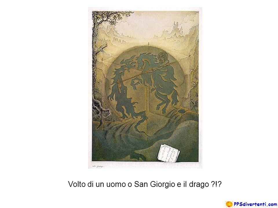 Due volti di Leonardo o due cavalieri ?!?