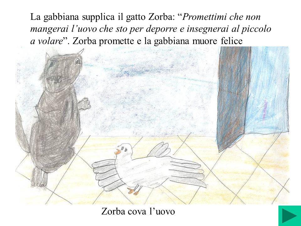 La gabbiana supplica il gatto Zorba: Promettimi che non mangerai luovo che sto per deporre e insegnerai al piccolo a volare. Zorba promette e la gabbi