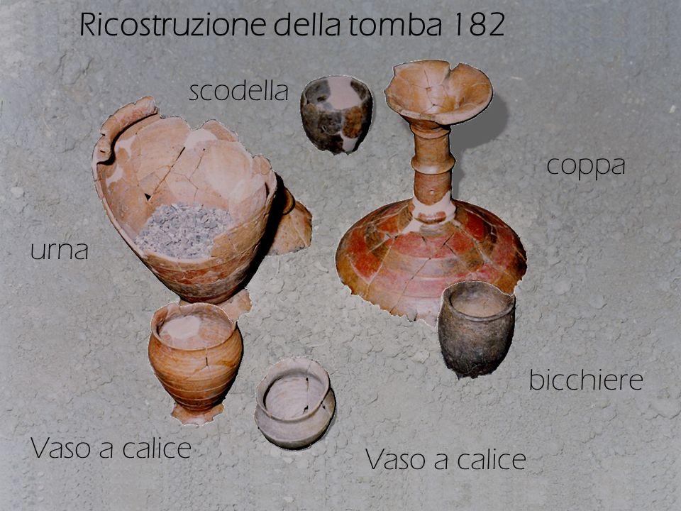 Ricostruzione della tomba 182 urna Vaso a calice coppa bicchiere scodella