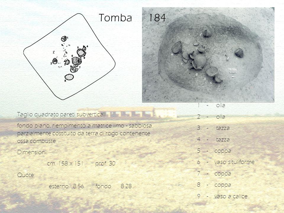 Tb 182/1P Fibula ad appendice terminale rialzata