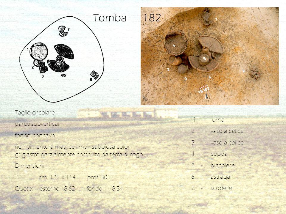 Tb 182/1C Armilla